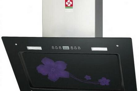 樱花抽油烟机白金天罗罩系列采用欧式风格